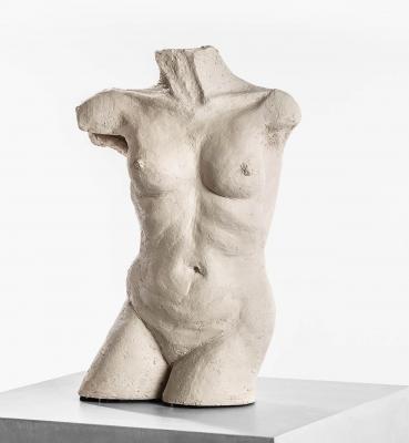 Weiblicher Torso III